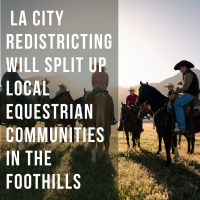 Featured image of LA City Coucil Redistricting Map will Split up Equestrian Communities.